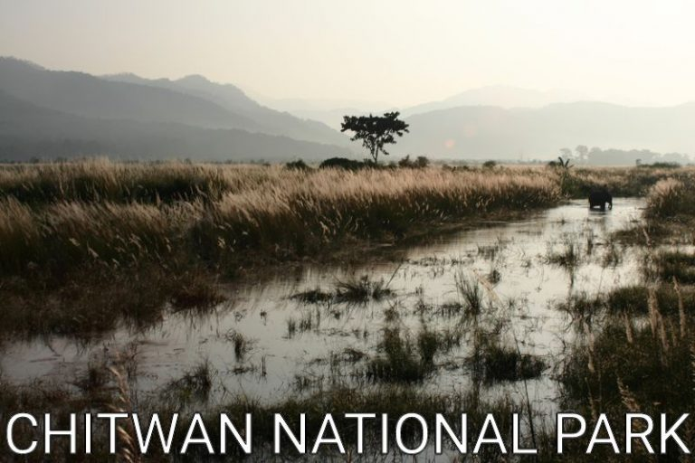 Nepal: Chitwan National Park for tourists