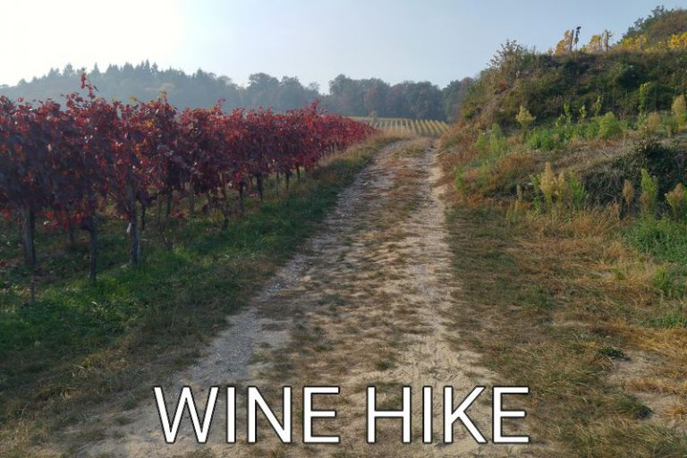 Germany: Wonderful autumn wine hike in the Kaiserstuhl area