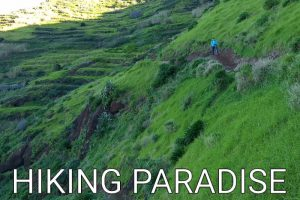 Madeira: Pain and pleasure – not all flat Levadas