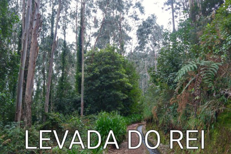 Madeira: What a view (Levada do Rei)
