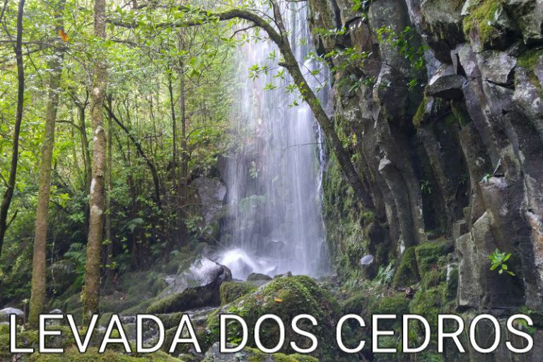 Madeira: On the Paul da Serra plateau