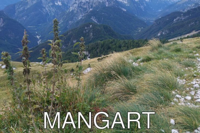 Slovenia: Day trip to Mangart