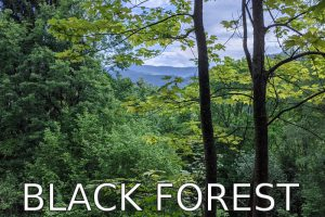 Germany: Hiking in the Black Forest (Bermersbach)