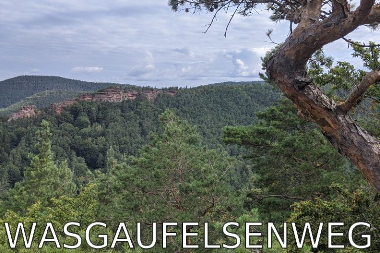 Germany: Escaping the heat – morning hike in Palatinate