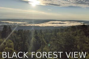 Germany: A hike with a view (Northern Black Forest)